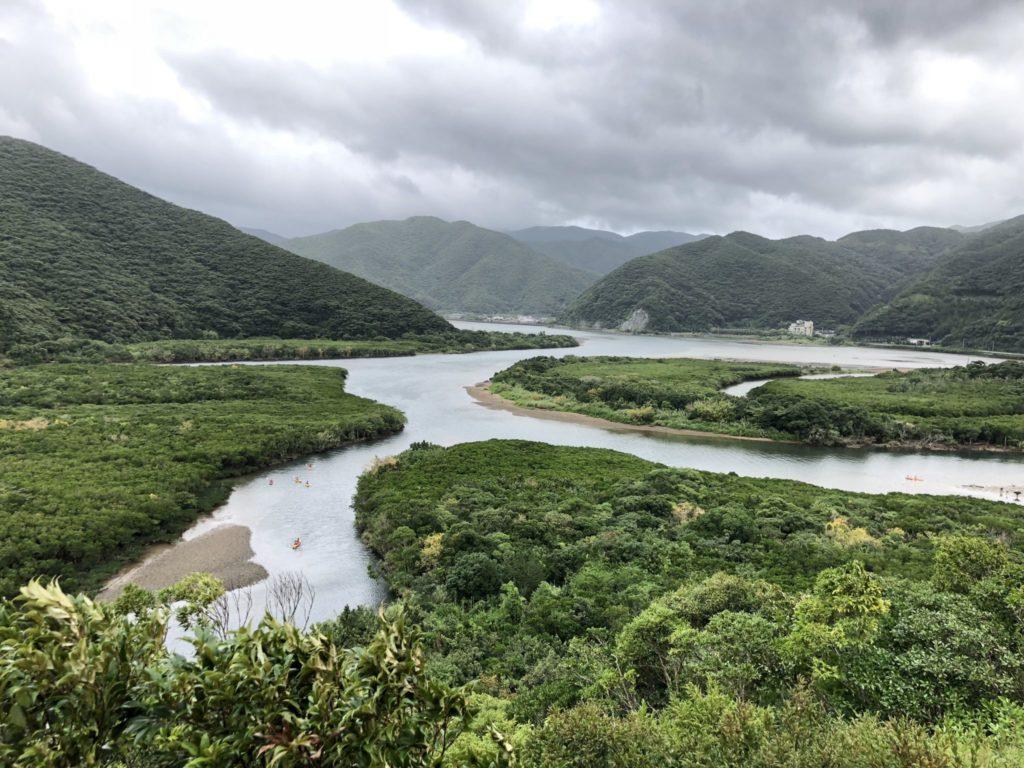 奄美大島のマングローブ原生林
