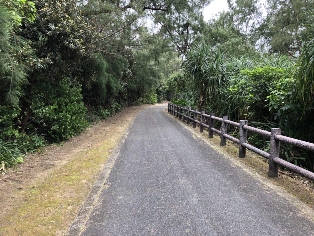 奄美大島の土盛海岸の遊歩道
