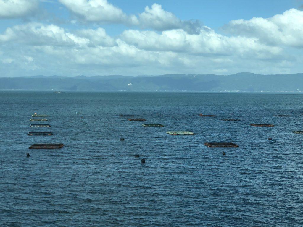 桜島の錦江湾